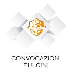 (Pulcini 2006) Cesano - Ottavia